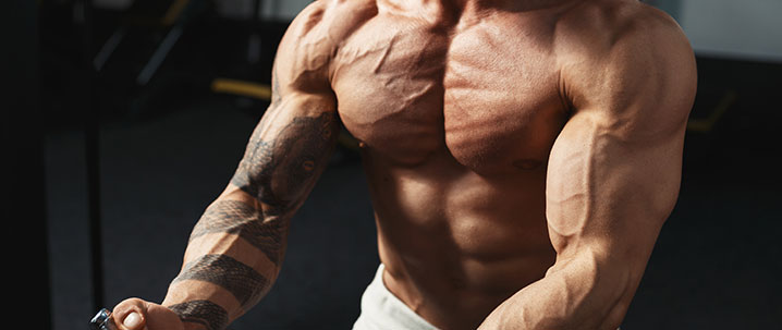 Upper Body Fitness Plan: Here's a Complete Guide